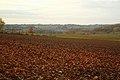 Vlaamse Ardennen 39.jpg