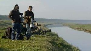 File:Vogelfotografen bij het Wagejot-4804258.webm