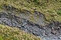 Volcanic rocks in the valley near Manganui Ski Area 02.jpg