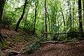 WLE-Nordrhein-Westfalen-Ennepe-Ruhr-Kreis-0797.jpg