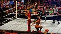 WWE Raw 2015-03-30 19-18-42 ILCE-6000 2851 DxO (18858743331).jpg