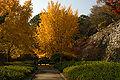 Wakayama Park04n4592.jpg