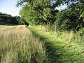 Walking route at Ancrum by the Ale Water - geograph.org.uk - 241020.jpg