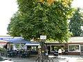 Wannsee Gustav-Hartmann-Platz.JPG