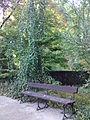 Warszawski Ogród Botaniczny – 41.jpg