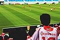 Watching football in jersey (Unsplash).jpg