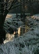 Watercourse beside the River Waveney (geograph 2307835).jpg