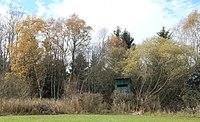 Wattersdorfer Moor Weyarn-21.jpg