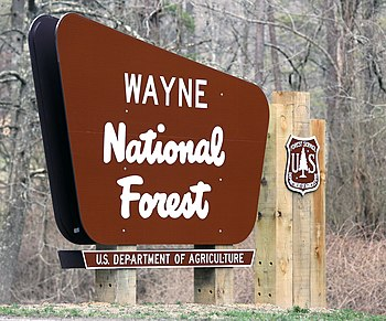 Wayne National Forest