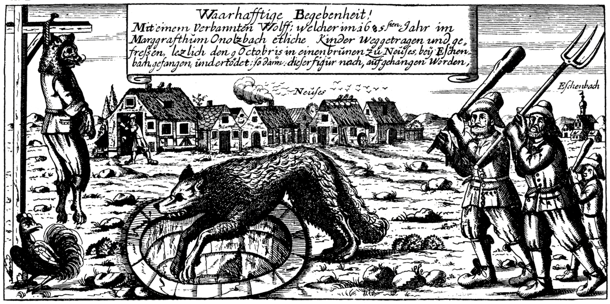 Image result for Werewolf of Ansbach