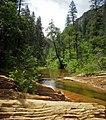 West Fork of Oak Creek (4174001647).jpg