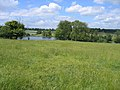 Wimpole Park lakes, Cambs - geograph.org.uk - 52158.jpg