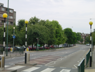 Tree preservation order - An example of a TPO: This line of trees on private land in Winchelsea Road, north London, was protected from imminent felling for development by action by the London Borough of Brent, after a local campaign by residents