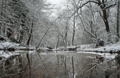 Winter-creek-reflection-snow-covered-trees - West Virginia - ForestWander.png