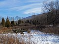 Winter at Cherry Valley (11735453344).jpg