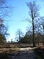 Wishmoor Cross, Bagshot Heath - geograph.org.uk - 114969.jpg