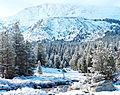 Woke up to Snow, Yosemite NP 5-15 (22588315026).jpg
