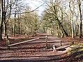Woodland Track on Boddington Hill - geograph.org.uk - 1188325.jpg