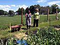 Woodward Elementary School's community garden in Kalamazoo. (14411382760).jpg
