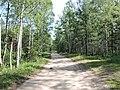 Yaroslavsky District, Yaroslavl Oblast, Russia - panoramio (113).jpg