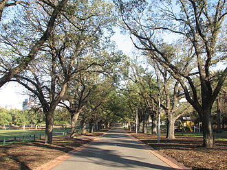 Yarra Park - Yarra Park