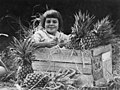 Young girl sitting in a crate of Queensland pineapples, 1924 (30141571085).jpg