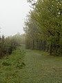 Z Kobylia na Kozol - panoramio.jpg
