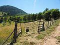Zaovine - panoramio (6).jpg