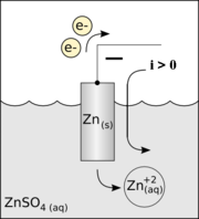 Diagram of a zinc anode in a galvanic cell.