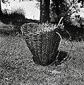 """""""Naram?n"""" koš (starejši tip koša). Kočarija 1956.jpg"""