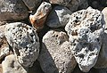 'Coral Boulders' - geograph.org.uk - 868374.jpg