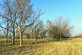 Γαλικός Ποταμός - panoramio (5).jpg