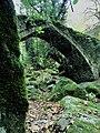 Η γεφυρα της Τσαγκαραδας.jpg