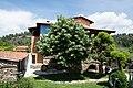 Χαλκιδική, Σιθωνία, Ελιά - Athena Pallas Village - panoramio (6).jpg