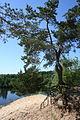 Генеральское озеро - panoramio - Andris Malygin.jpg