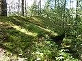 ДОТ - panoramio (6).jpg
