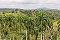 Доминиканская Республика - panoramio (14).jpg