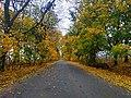 Дорога на Масівці восени.jpg