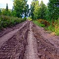 Дорога на Мулдакаево, Бедярыш, Челябинская область - panoramio.jpg