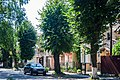 Житловий квартал із типових котеджів. Вул.Володимирська.jpg