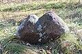 Каменныя крыжы, вёска Пуцькі, Чавускі раён (2).jpg