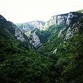 Лазарев кањон са врха.jpg