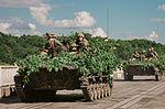 На Дніпропетровщині десантники «захопили» міст, форсували водну перешкоду та розпочали «рейдові дії» (27349336895).jpg