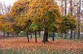 Осень в Москве. - panoramio.jpg