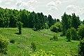 Памятник природы регионального значения «Сурки».jpg