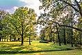 Парк(1).jpg