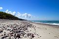 Пляж на Курской Косе.jpg