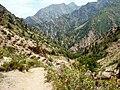 Тропа с Песчаного перевала к Березовой роще - panoramio.jpg