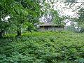 خانه ای چوبی در دل جنگل.jpg