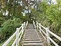 与兵衛沼公園 Yoheinuma Park - panoramio (3).jpg
